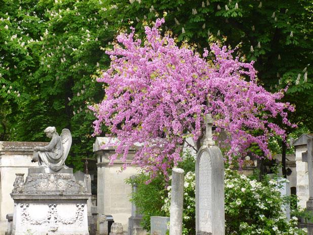 Visite guidée du cimetière du Père Lachaise