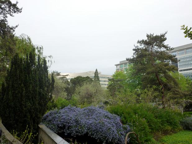 Visite guidée du jardin Atlantique