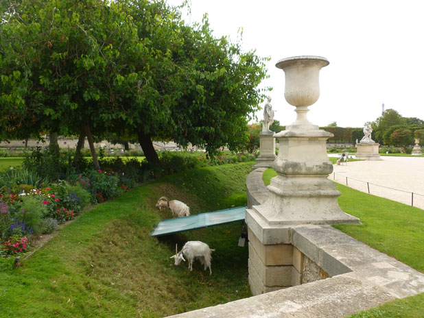 Visite guidée du jardin des Tuileries
