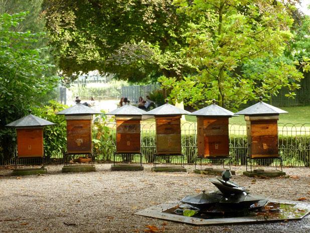 Visite guidée du jardin du Luxembourg