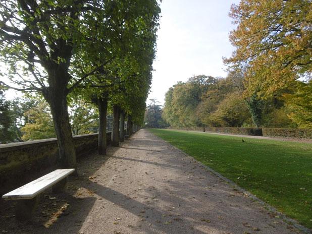 Visite guidée du parc Henri Sellier