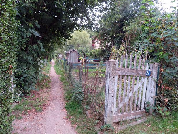 Jardins, bois et étang du Plessis Robinson